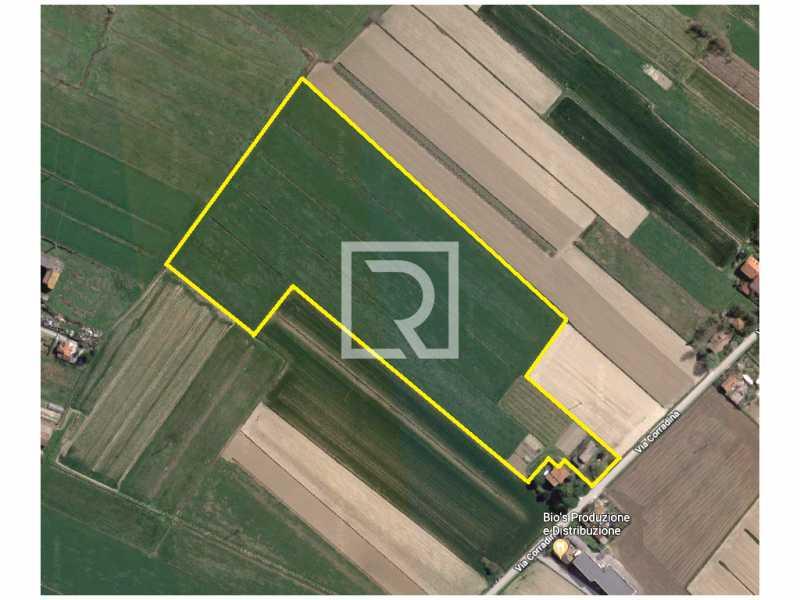 terreno in vendita cervia castiglione foto1-100096920