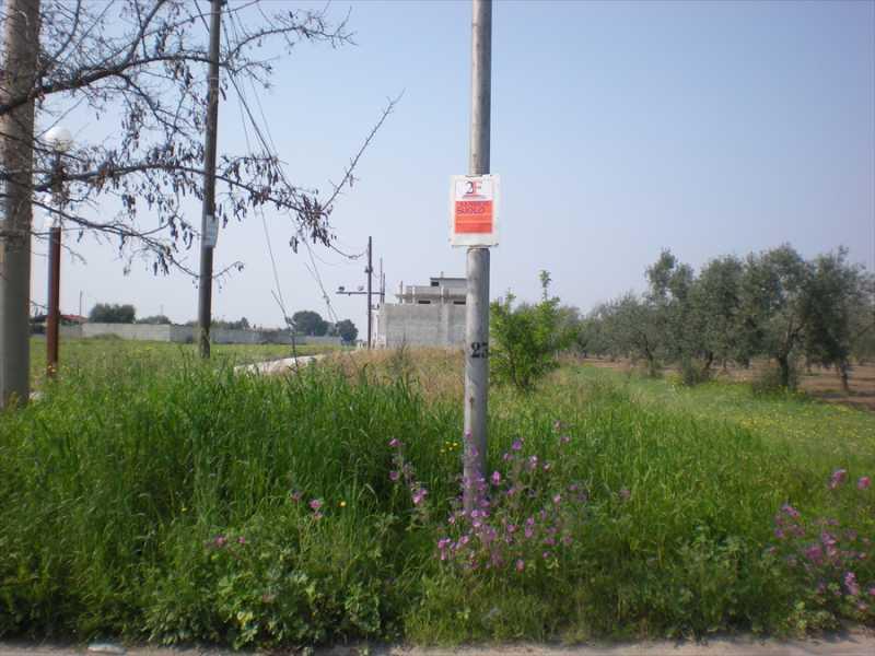 terreno in vendita a cerignola via torre quarto foto2-103326330