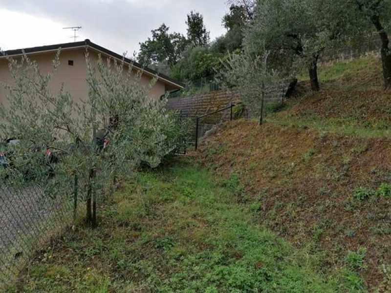 villa singola in vendita a lucca nozzano san pietro foto3-120434700
