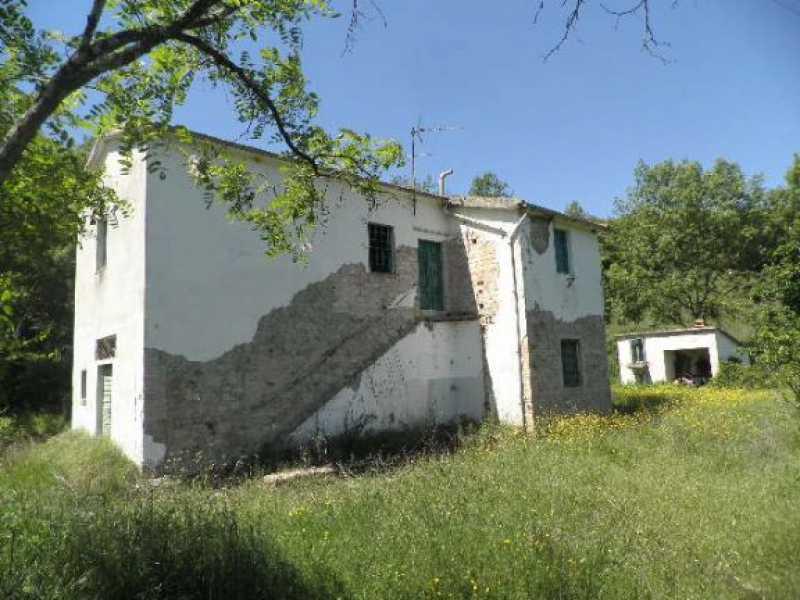 rustico casale corte in vendita a monteverdi marittimo canneto foto2-12748681