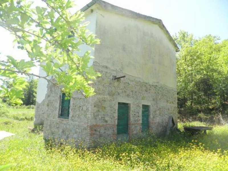 rustico casale corte in vendita a monteverdi marittimo canneto foto3-12748681