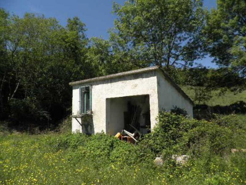 rustico casale corte in vendita a monteverdi marittimo canneto foto4-12748681