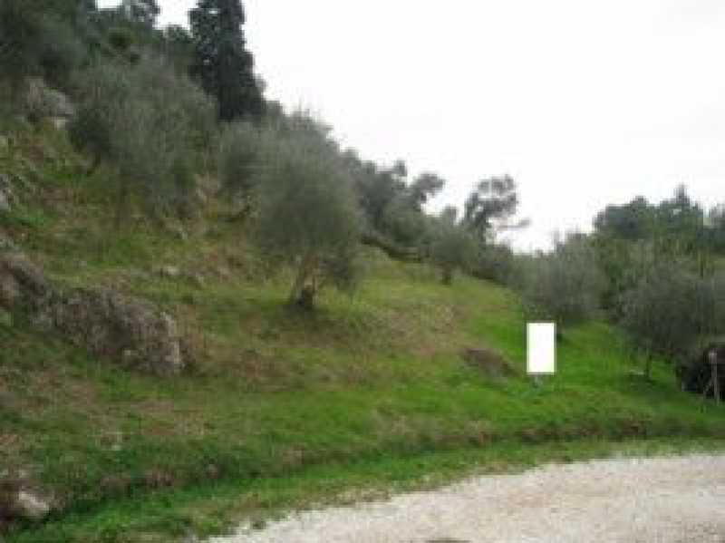 terreno agricolo in vendita a camaiore camaiore silerchie foto3-14638477