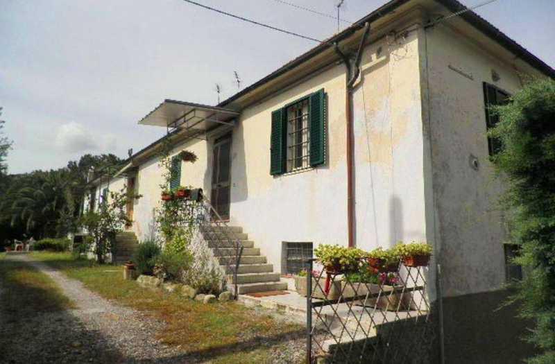 rustico casale corte in vendita a rosignano marittimo rosignano marittimo foto4-22208566
