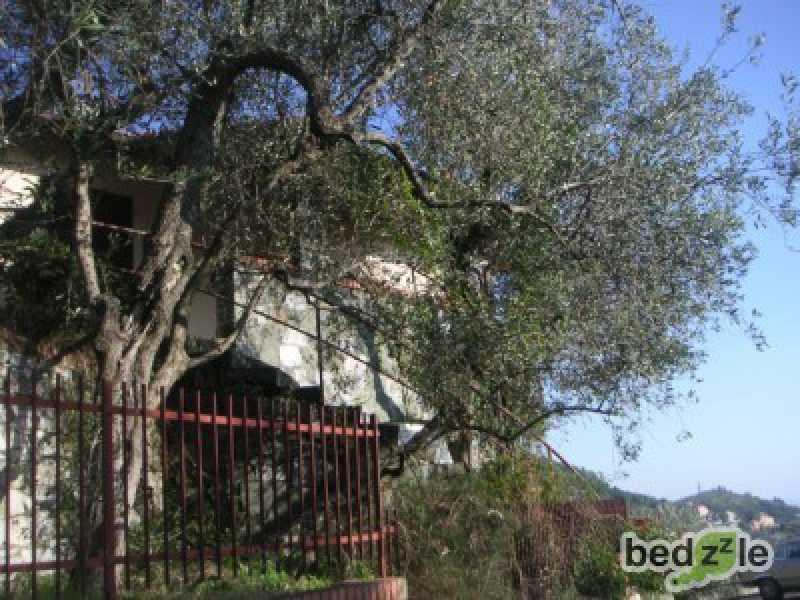 Vacanza in appartamento a leivi via al castello 33 foto2-26489529