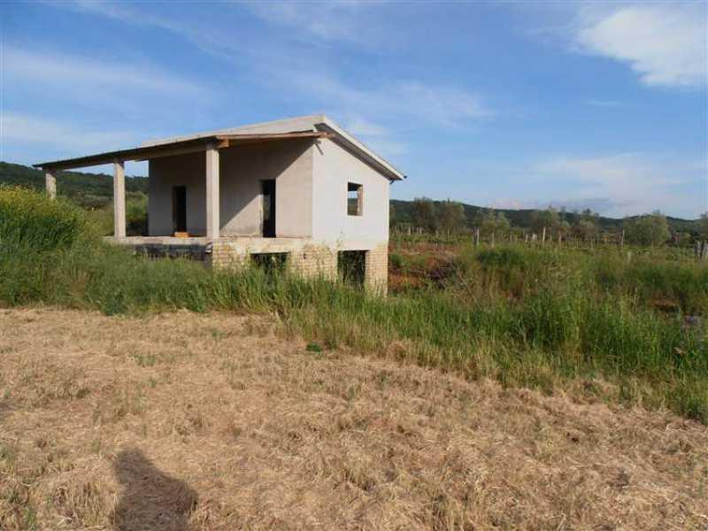 annesso agricolo in vendita a monte romano foto2-40664917