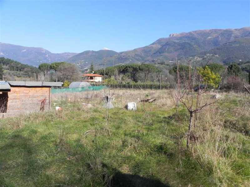 terreno agricolo in vendita a camaiore camaiore pontemazzori foto14-50470144