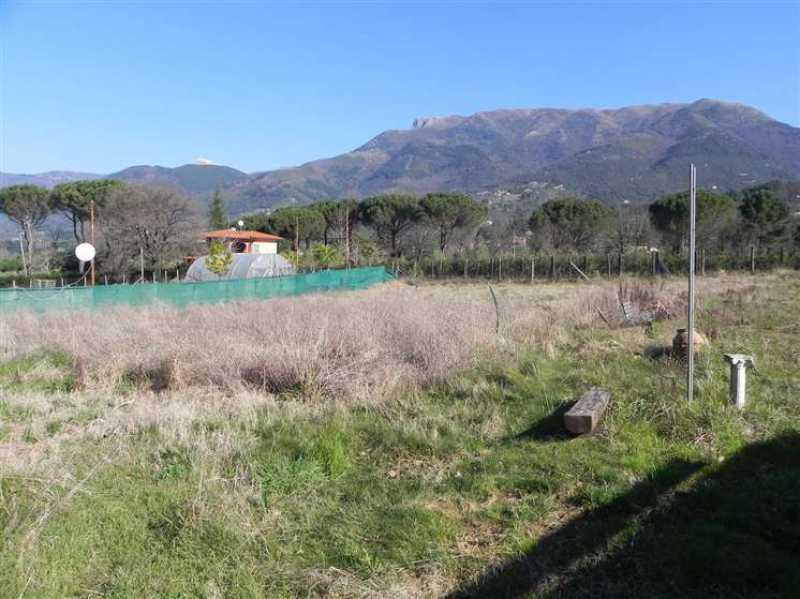 terreno agricolo in vendita a camaiore camaiore pontemazzori foto15-50470144
