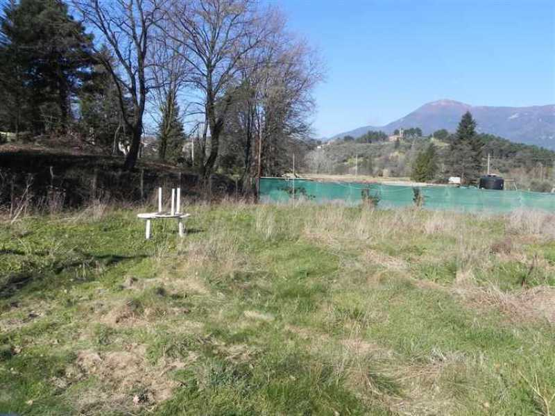 terreno agricolo in vendita a camaiore camaiore pontemazzori foto16-50470144
