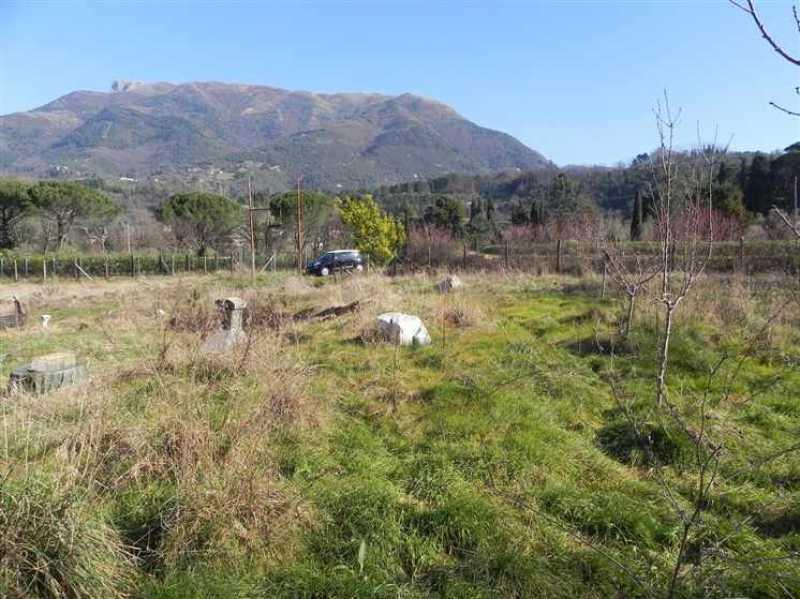 terreno agricolo in vendita a camaiore camaiore pontemazzori foto2-50470144