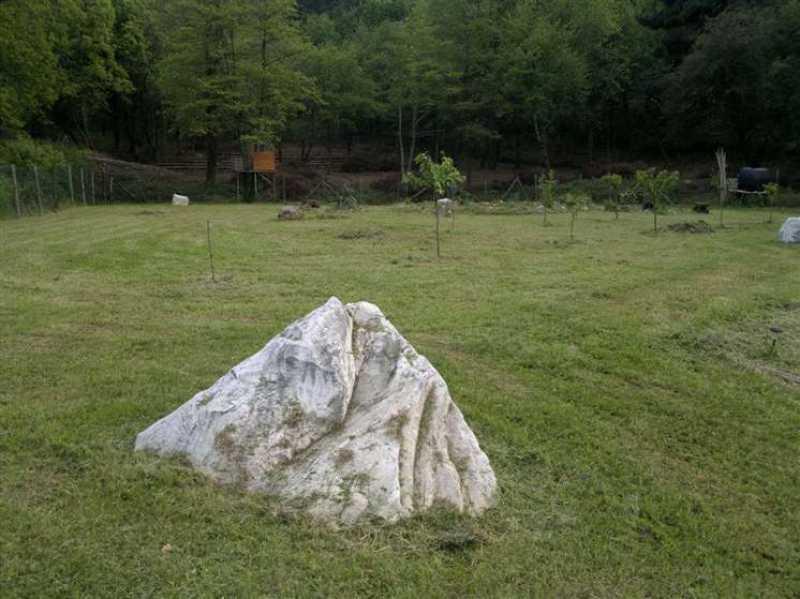 terreno agricolo in vendita a camaiore camaiore pontemazzori foto5-50470144