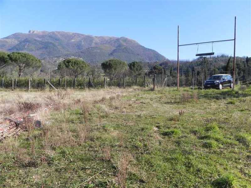 terreno agricolo in vendita a camaiore camaiore pontemazzori foto6-50470144
