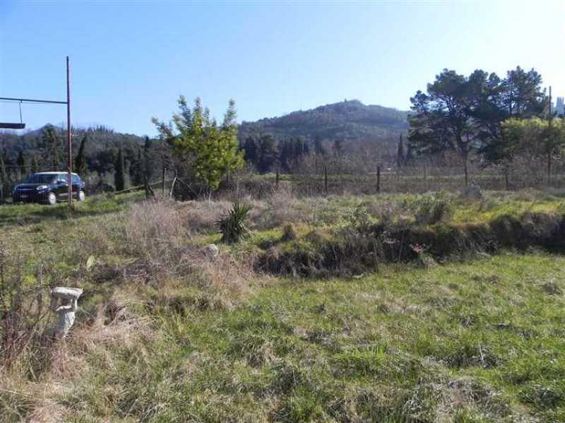 terreno agricolo in vendita a camaiore camaiore pontemazzori foto8-50470144