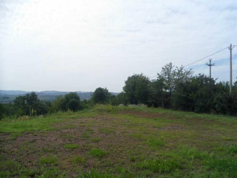 villa o villino in vendita a torri di quartesolo via treviso foto4-50599789