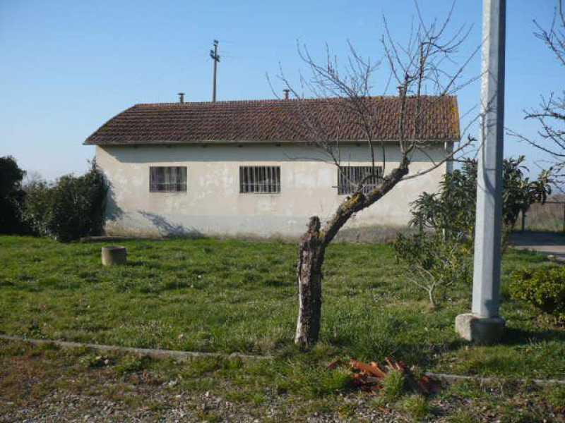 Vendita terreno agricolo arezzo pag 2 for Case di 4 locali in vendita