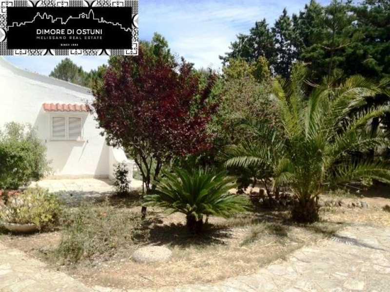 Vacanza in villa singola ad ostuni foto3-55562670