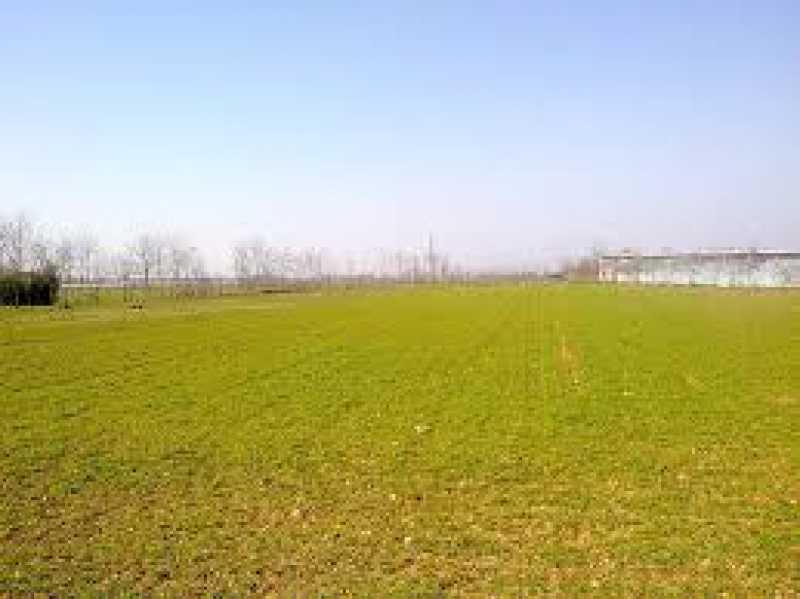 terreno terreno in vendita carpi 9 foto1-55567812