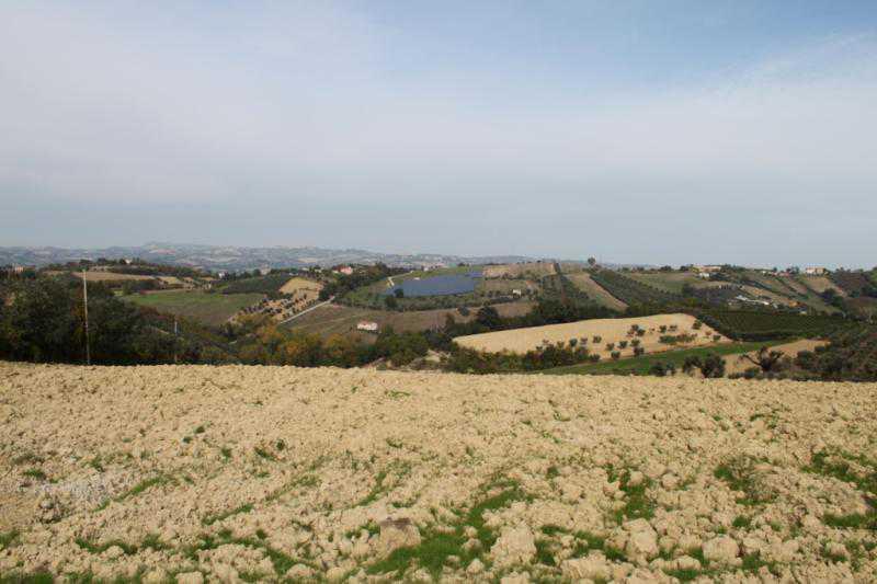 terreno agricolo controguerra foto1-57501724