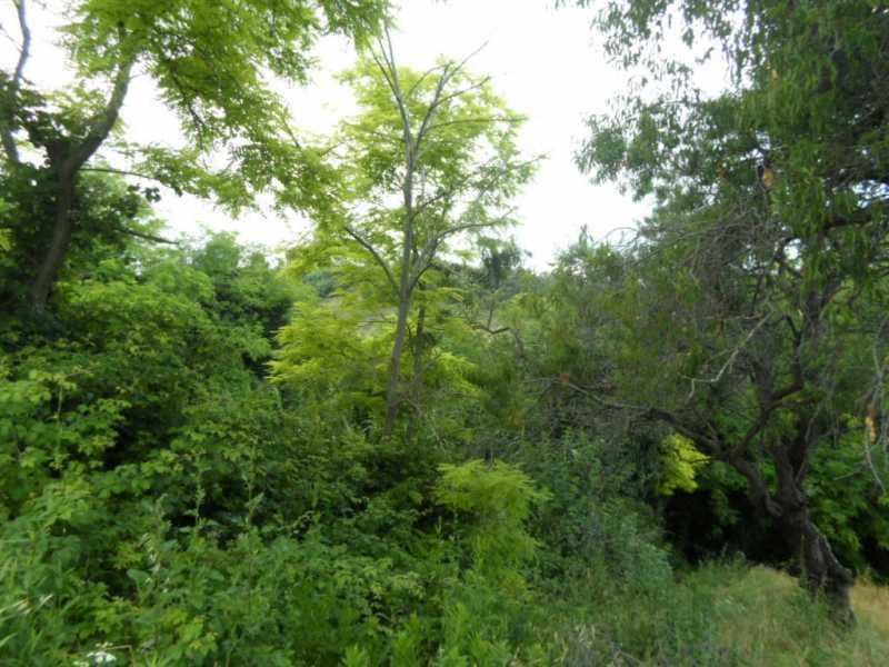 terreno in vendita a san benedetto del tronto panoramica foto2-57523351
