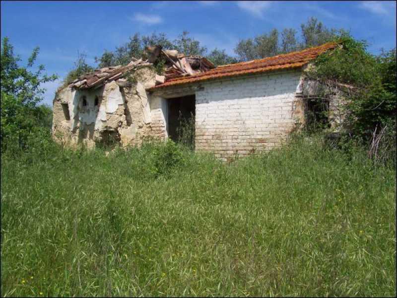 rustico casale corte in vendita a sant`omero foto3-57559682