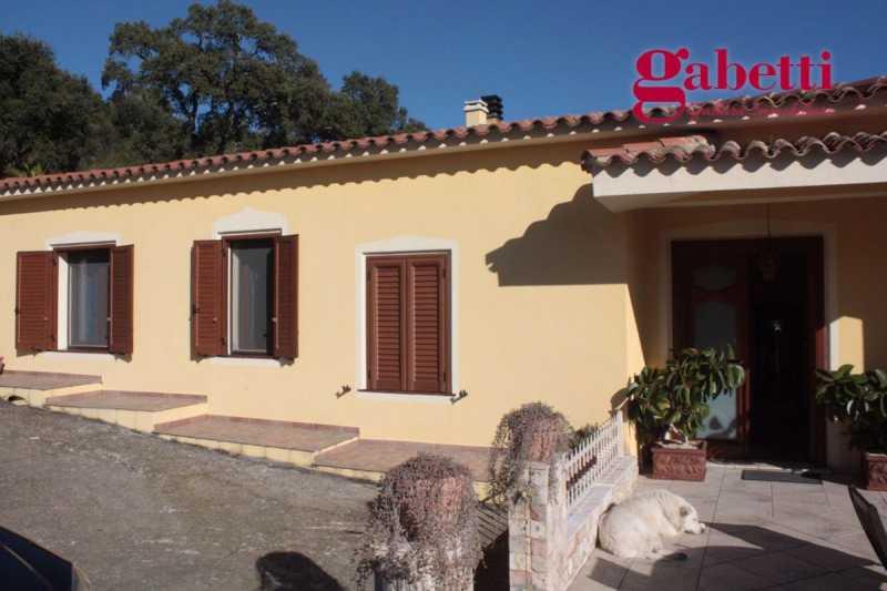 villa in vendita a tempio pausania sp136 20 foto3-59525584
