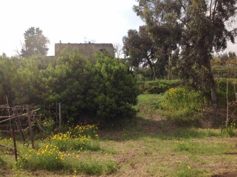 azienda agricola in vendita a pozzuoli via monterusso foto3-61265947