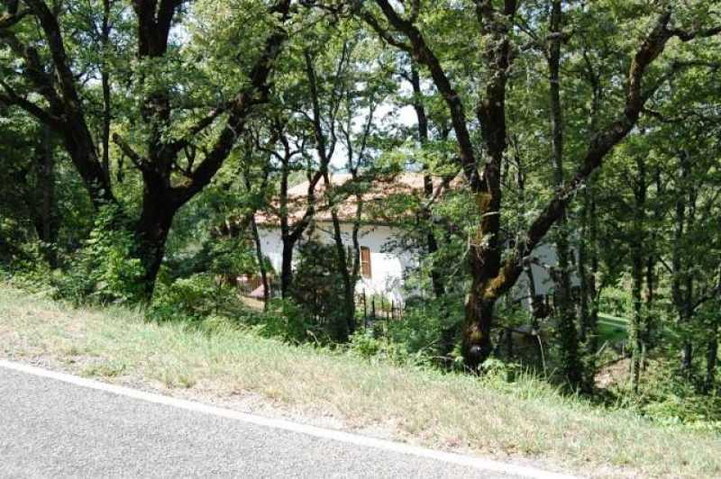 villa singola in vendita a san venanzo foto2-62758387