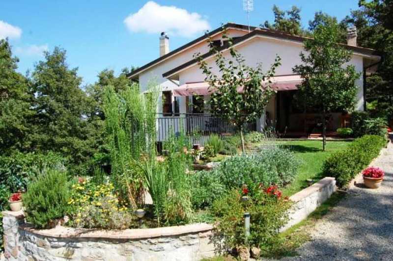 villa singola in vendita a san venanzo foto4-62758387