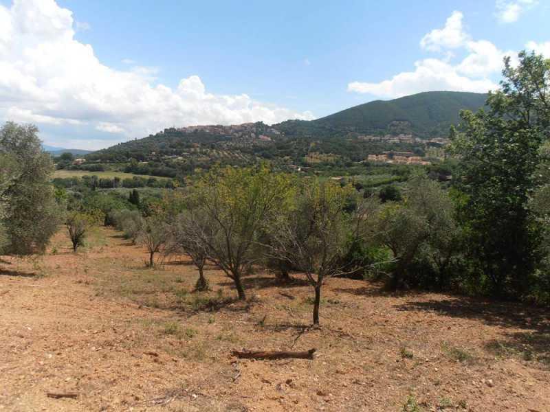 terreno agricolo in vendita a scarlino foto3-62812294