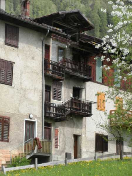 appartamento in vendita a rabbi rabbi centro foto3-66881521