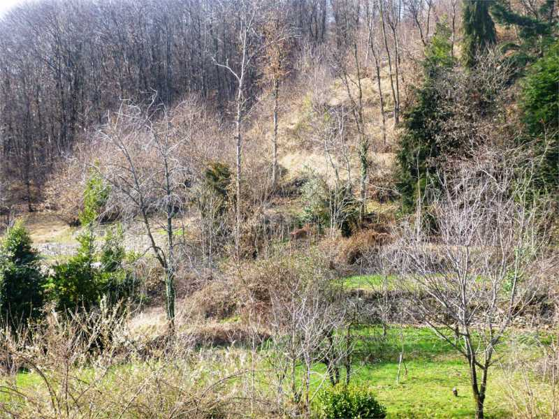 terreno in vendita a nebbiuno foto2-72868683