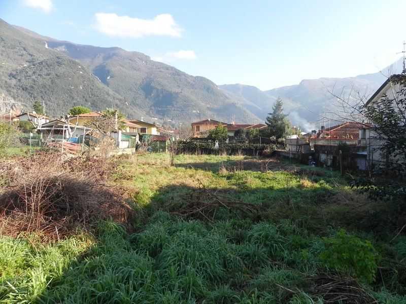 terreno agricolo in vendita camaiore foto1-73169580