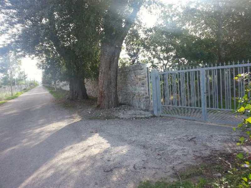 terreno agricolo in vendita a rossano mare fossa foto2-73196520