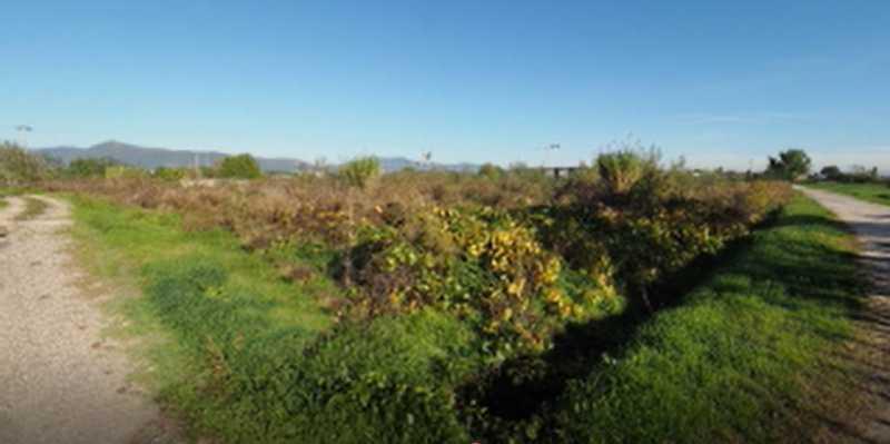terreno agricolo in vendita a prato fontanelle foto3-73209242