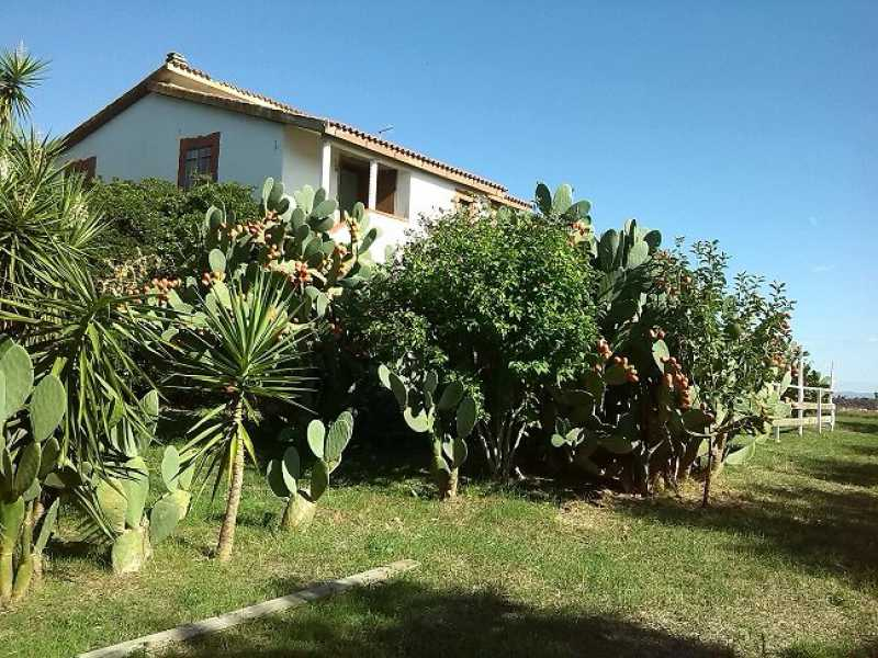 villa singola in vendita a montalto di castro foto2-73233196