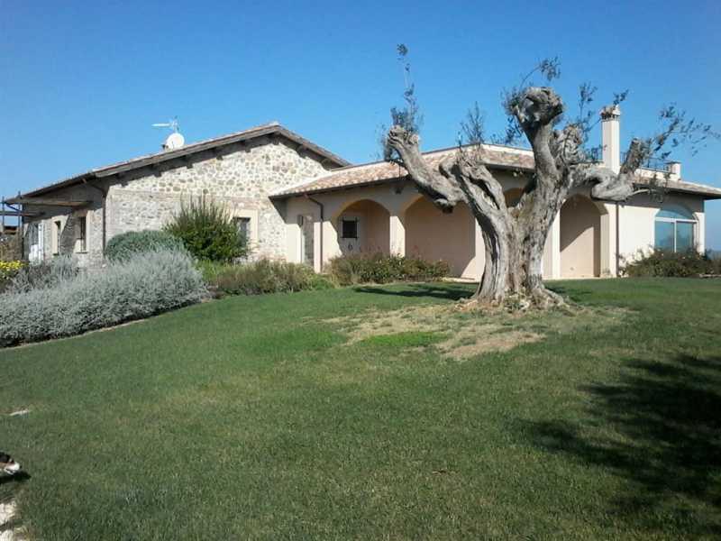 villa singola in vendita a montalto di castro foto2-73233247