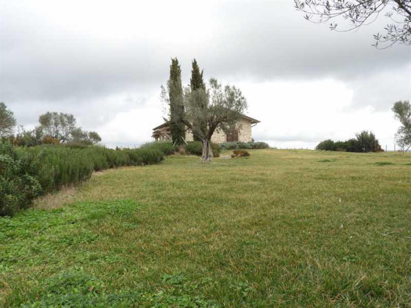villa singola in vendita a montalto di castro foto3-73233247