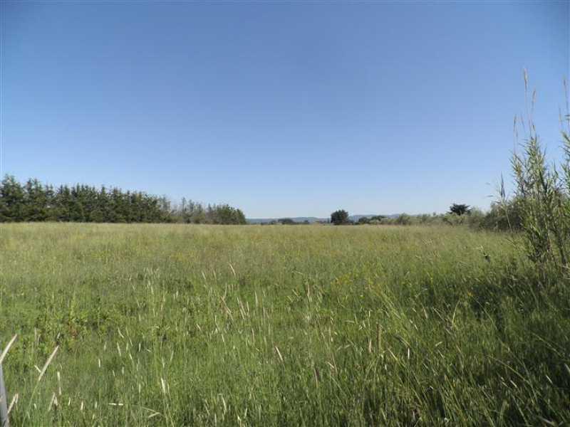 terreno agricolo in vendita a cecina foto4-73243355