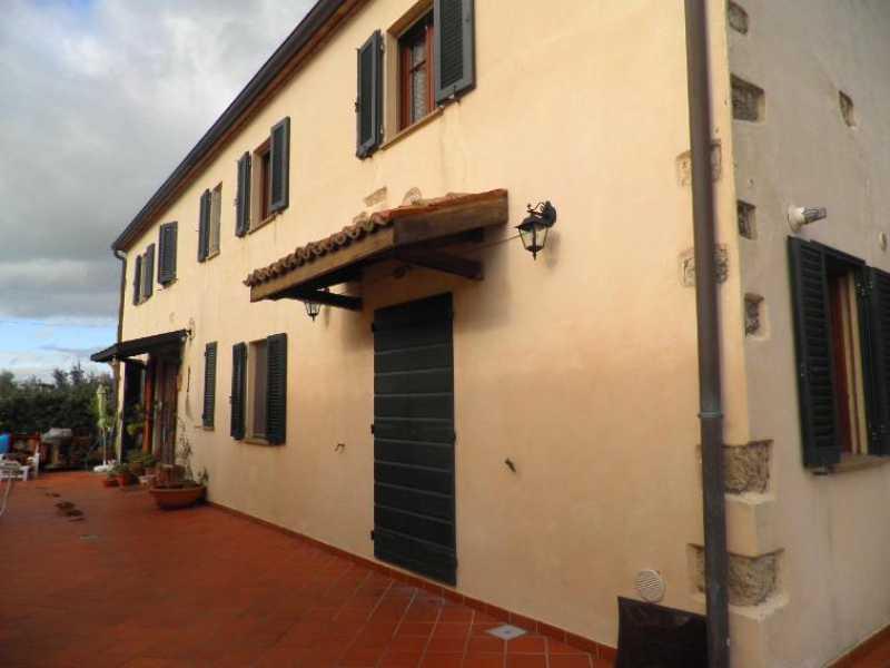 appartamento in vendita a rosignano marittimo rosignano marittimo foto4-73243713