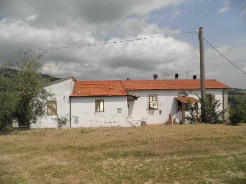 appartamento in vendita a rosignano marittimo castelnuovo della misericordia foto2-73243805