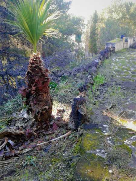 villa o villino in vendita a lipari via vulcanello foto4-74261315