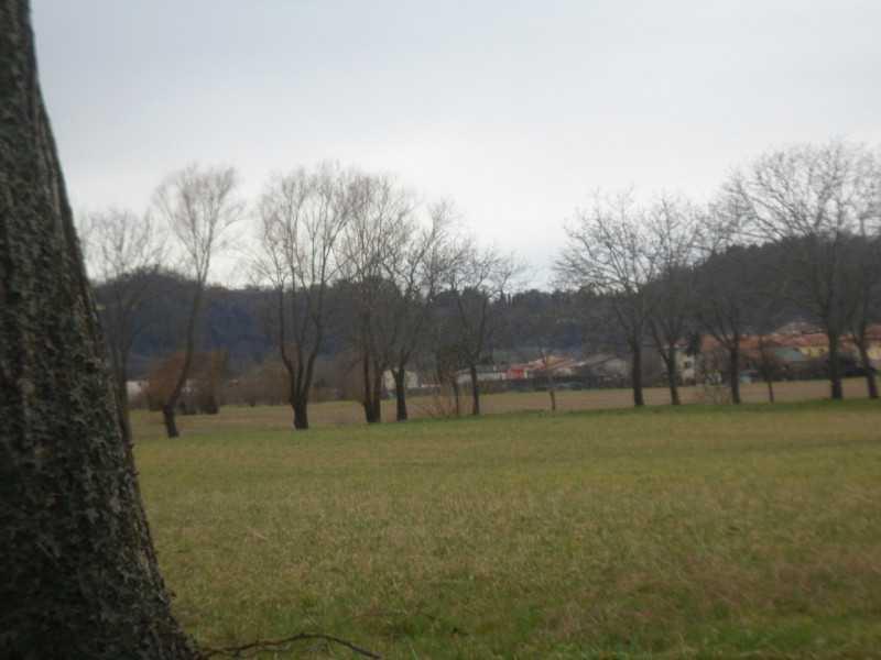 villa in affitto a vicenza via dei laghi foto2-74302596