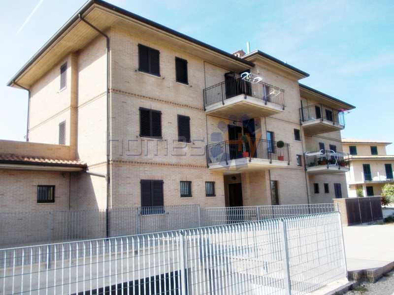appartamento in vendita grottazzolina foto1-74422125