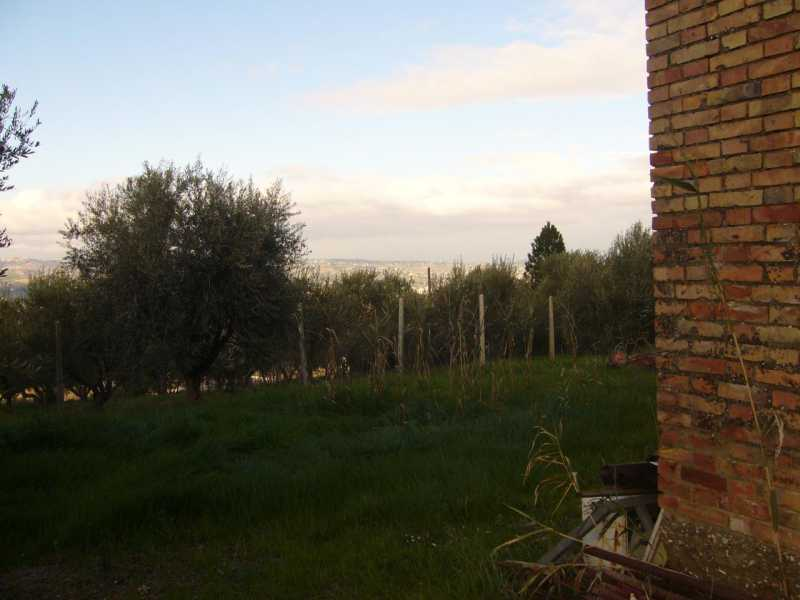 rustico casale corte in vendita a controguerra panoramica foto3-74425832