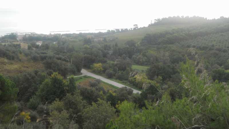terreno in vendita a massignano contrada santa giuliana foto2-74426372