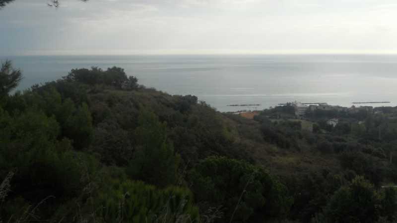 terreno in vendita a massignano contrada santa giuliana foto3-74426372