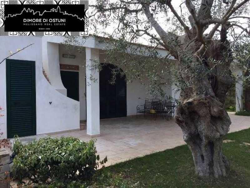 villa in rosa marina vacanze foto1-76739882