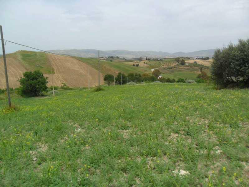 vendita terreni san cataldo foto1-77927221