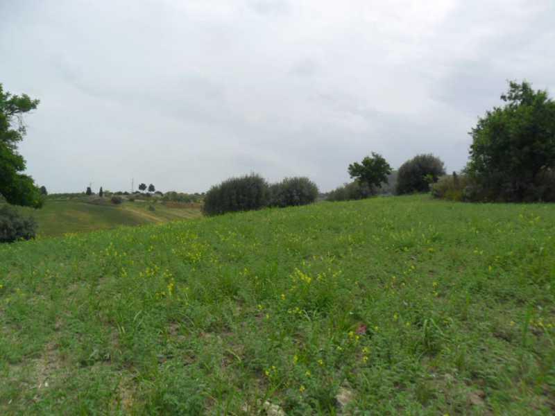terreno agricolo in vendita a san cataldo c so v emanuele eroi risorgimento foto2-77927221