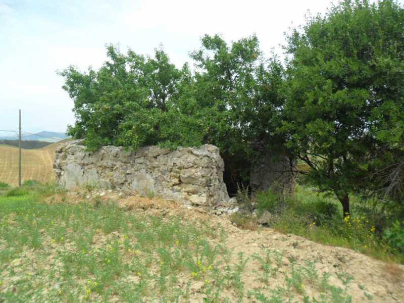 terreno agricolo in vendita a san cataldo c so v emanuele eroi risorgimento foto4-77927221